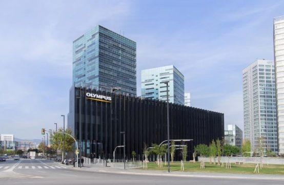 Plaza Europa, 31